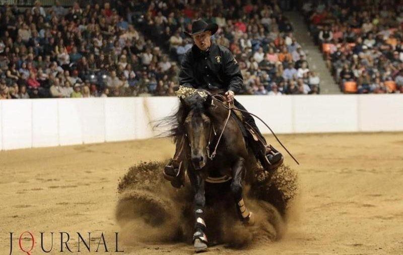 Como ler o seu cavalo – parte 2