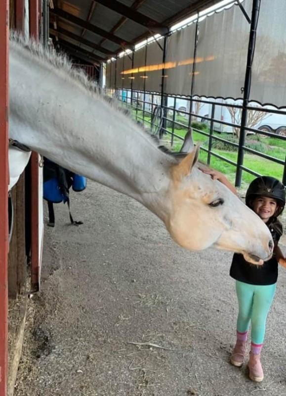 Menina de 5 anos tem incrível dom de acalmar cavalos grandes (veja o video)