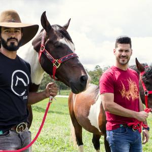 Camiseta Preta Estampada - Clube do Cavalo